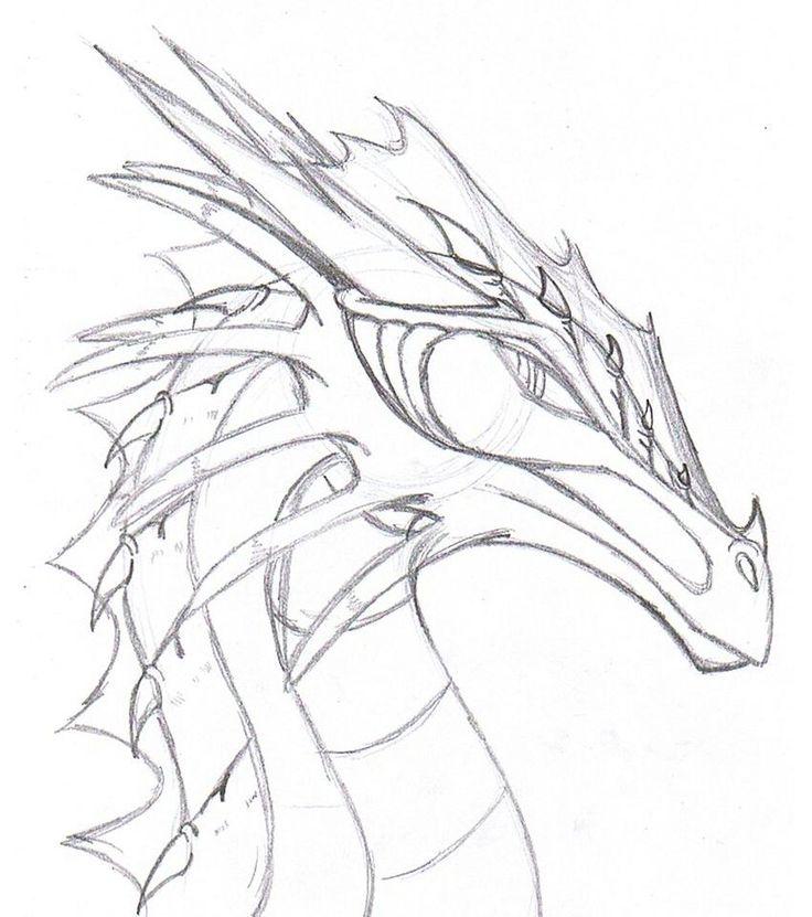 Dragon Photo Drawing