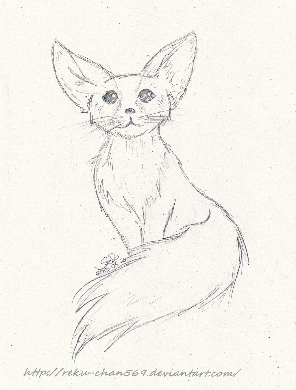Fennec Fox Drawing Art