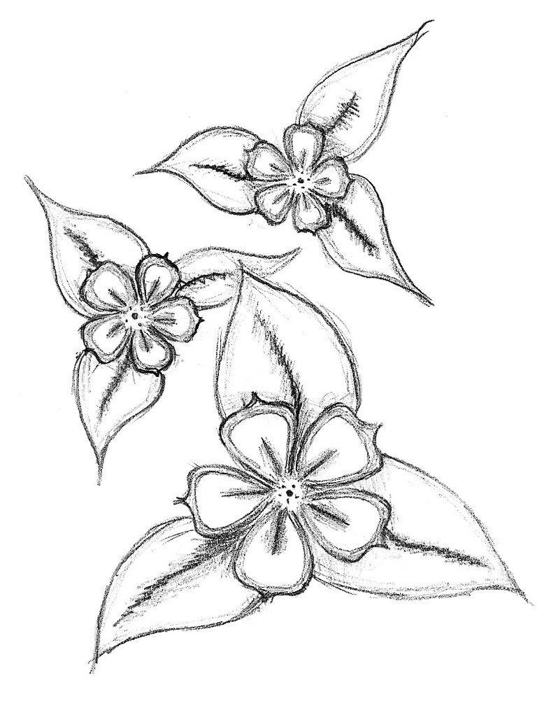 Simple Flower Art Drawing